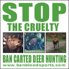 irish council against blood sports ban carted deer hunting