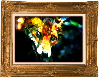 Photo frame around painting of suffering fox